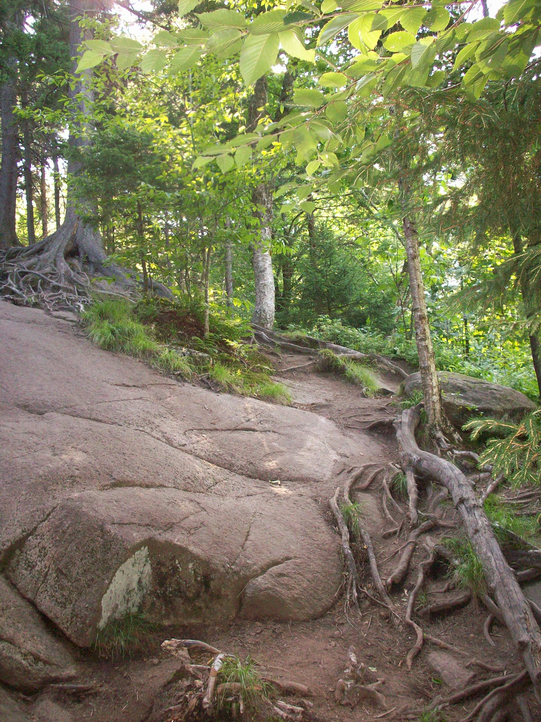 a knotty section halfway up Bald Mountain